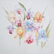 Vera Lowen Iris su seta bianca