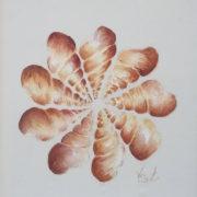 Vera Lowen composizione di conchiglie su seta 33x28